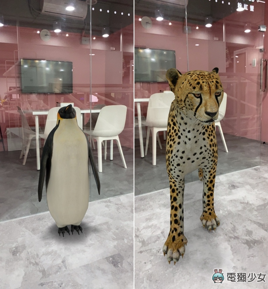 Google AR 搜尋好好玩!一秒讓家裡變成動物園 一起來跟老虎、企鵝拍照吧!